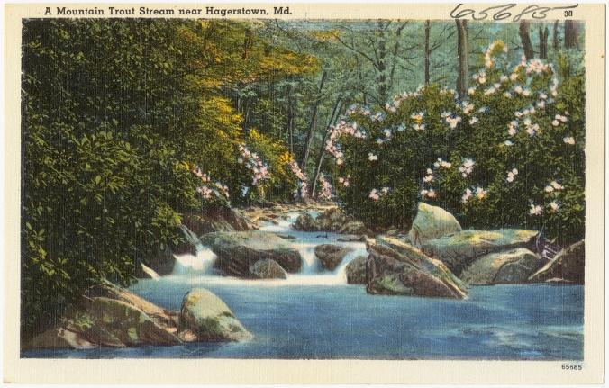 stream_postcard